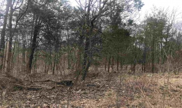 0 Glen Lily Rd, Bowling Green, Kentucky 42101, ,Residential Lot,For Sale,Glen Lily Rd,20191310