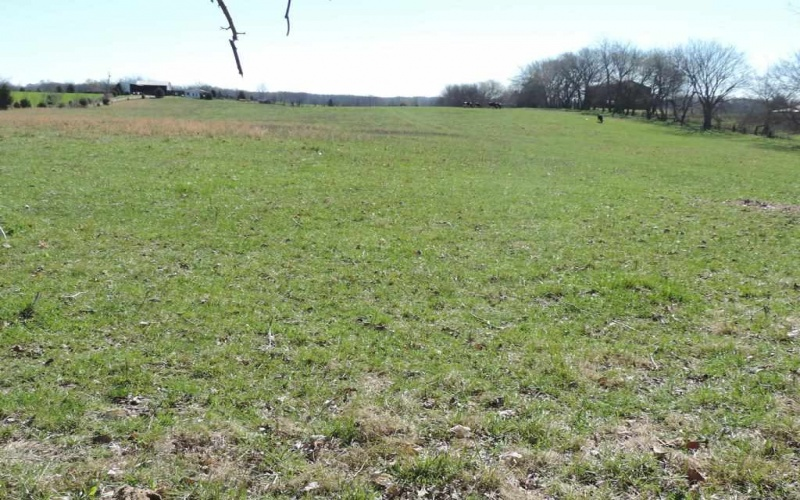 0 Woody Atkinson Rd, Woodburn, Kentucky 42170, ,Residential Lot,For Sale,Woody Atkinson Rd,20191367