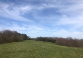 Knob Rd, Brownsville, Kentucky 42210, ,Vacant Land,Auction,Knob Rd,20191407