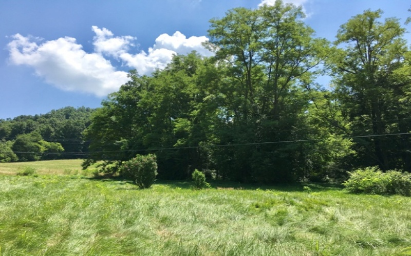 28718 Louisville Rd Rd, Cave City, Kentucky 42127, 3 Bedrooms Bedrooms, ,2 BathroomsBathrooms,Real estate and personal property,Past Auctions,Louisville Rd,20191415