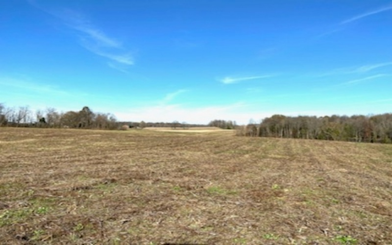 1553 Poynter Rd, Glasgow, Kentucky 42141, ,Vacant Land,Auction,Poynter,20191432