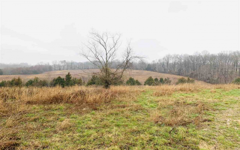 0 Halfway Rd, Scottsville, Kentucky 42164, ,Agri/imp/unimp,For Sale,Halfway Rd,20190958
