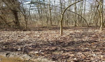 Lots 3 & 4 Rockhouse Rd, Morgantown, Kentucky 42261, ,General Tract - Vacant,For Sale,Rockhouse Rd,20191030