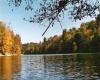 Lot 6 Whitefeather Loop, Lake Malone, Belton, Kentucky 42324, ,Residential Lot,For Sale,Whitefeather Loop, Lake Malone,20191152