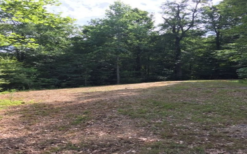 Lot 19 Crazy Horse Ln., Lewisburg Lake Malone, Kentucky 42256, ,Residential Lot,For Sale,Crazy Horse Ln.,20130827