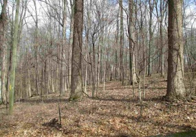 Happy Hills Court (lot 22), Glasgow, Kentucky 42141, ,Residential Lot,For Sale,Happy Hills Court (lot 22),20153014