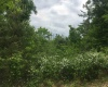 Lots 7 & 8 Whitefeather Loop, Lewisburg, Kentucky 42256, ,Residential Lot,For Sale,Whitefeather Loop,20161446