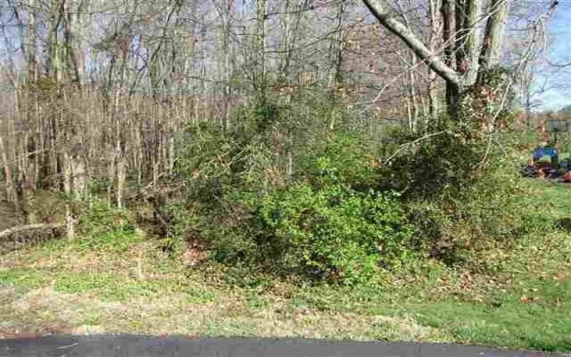 Timberlane Tract 1, Franklin, Kentucky 42134, ,General Tract - Vacant,For Sale,Timberlane Tract 1,20161968