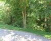 DORAN CIRCLE, Scottsville, Kentucky 42164, ,Residential Lot,For Sale,DORAN CIRCLE,20162002