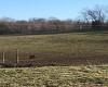 4998 Matthews Mill Rd, Glasgow, Kentucky 42141, ,Agri/imp/unimp,For Sale,Matthews Mill Rd,20170235