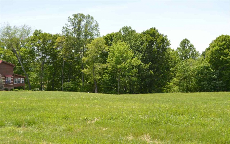 129 Stony Point Circle, Lucas, Kentucky 42156, ,Residential Lot,For Sale,Stony Point Circle,20171556