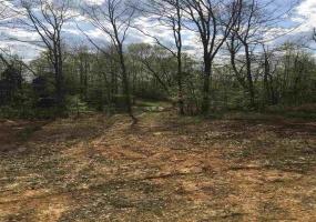 0 Edmonds Rd, Smiths Grove, Kentucky 42171, ,Agri/imp/unimp,For Sale,Edmonds Rd,20181564