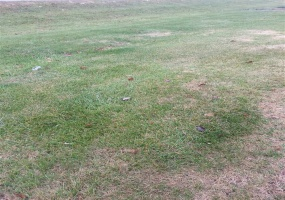 223 Old Post Drive, Alvaton, Kentucky 42122, ,Residential Lot,For Sale,Old Post Drive,20181576
