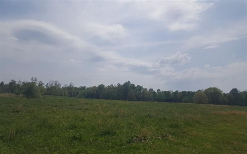 1591 Trammel Boyce Road, Scottsville, Kentucky 42164, ,Agri/imp/unimp,For Sale,Trammel Boyce Road,20181707